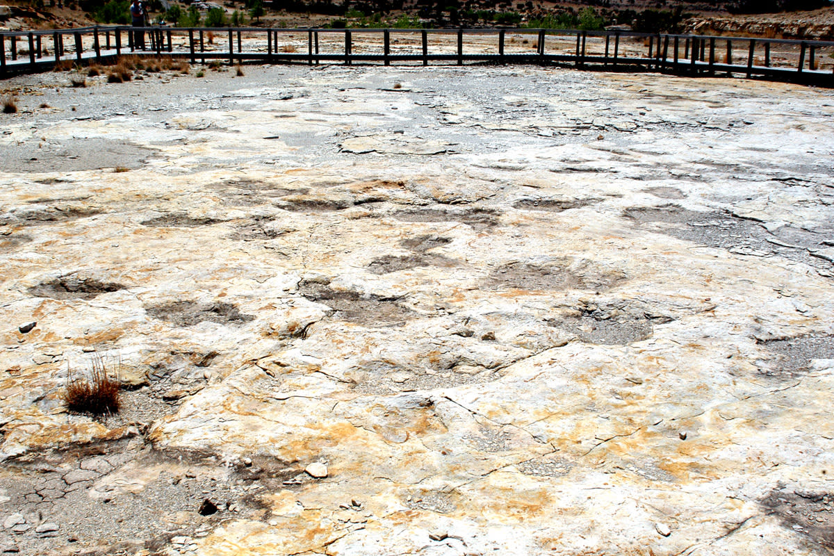 Dinosaur Trackways at Clayton Lake State Park