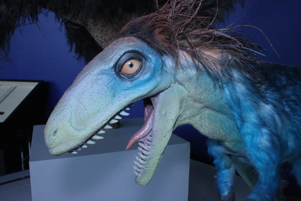 Tyrannosaurs: Meet the Family at the Science Center of Iowa & Blank IMAX Dome Theater