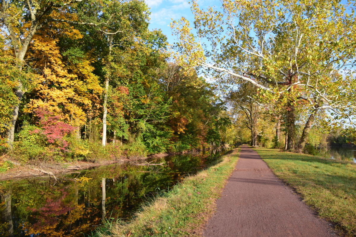 Delaware Canal Towpath in the Fall