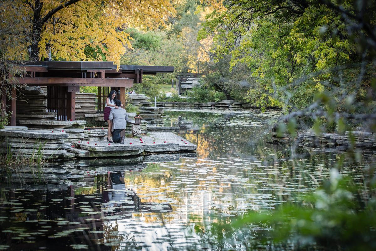 Alfred Caldwell Lily Pool Engagement