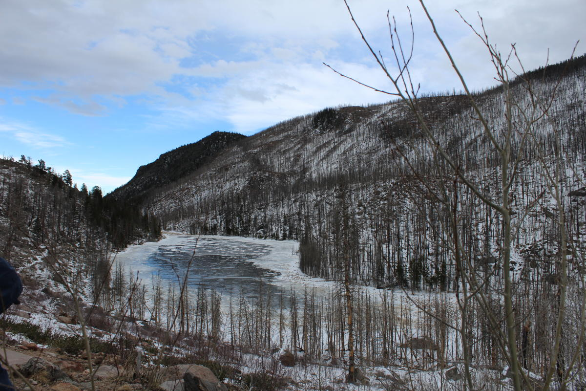 Cub Lake Winter
