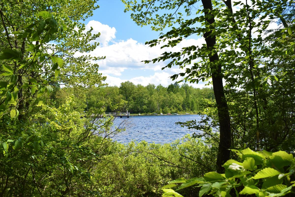 Take in the Pocono Scenery at Tobyhanna State Park
