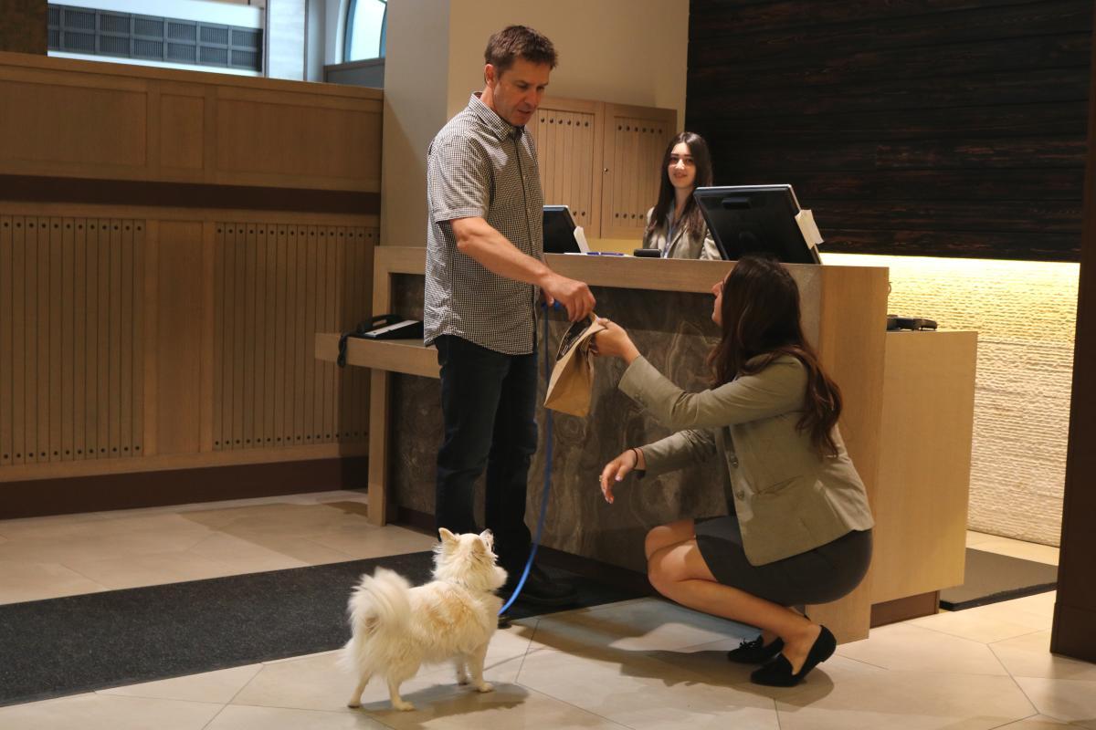 Delta Grand Dog Check in