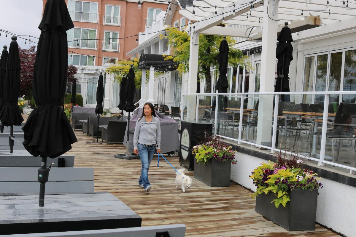 Hotel Eldorado Boardwalk with Dog