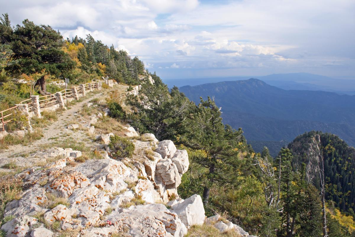 National Forests and Public Wilderness Lands
