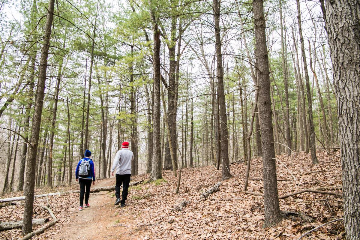 Two People Walking In Pate Hollow In Bloomington, IN