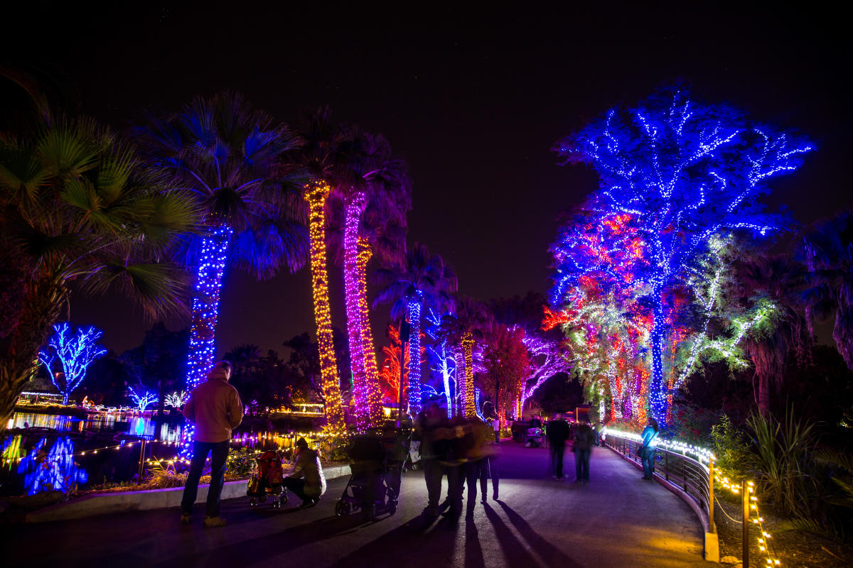 ZooLights at the Phoenix Zoo