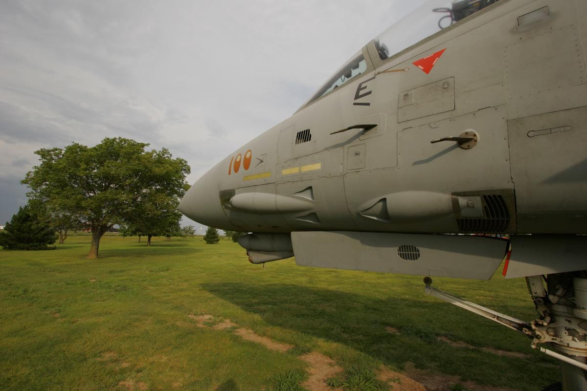 F-14 Tomcat Fighter Jet