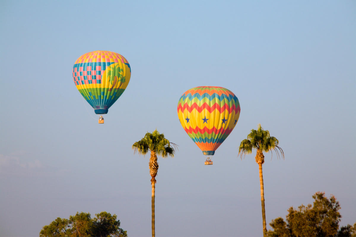 2 palms 2 balloon 2