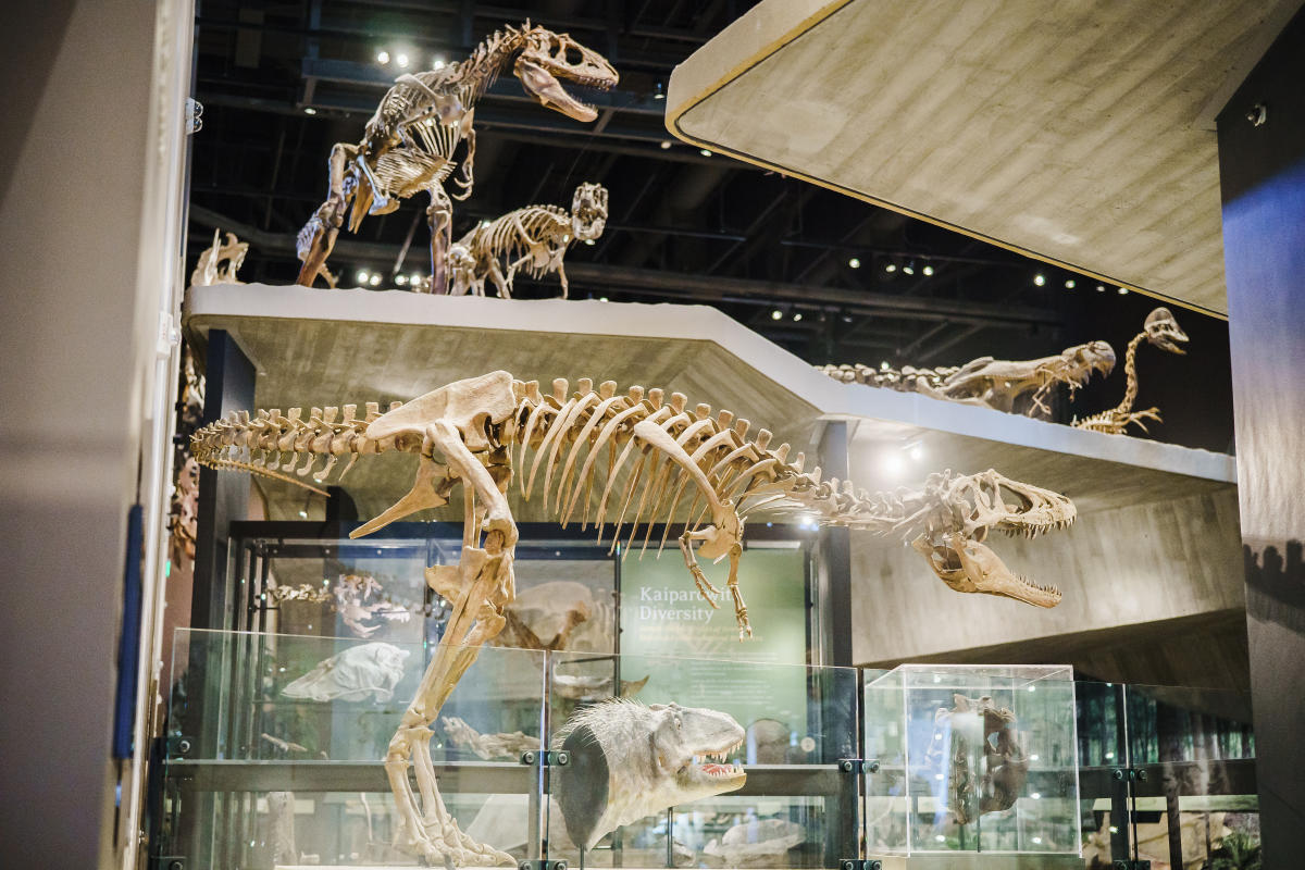 History comes alive at The Natural History Museum of Utah
