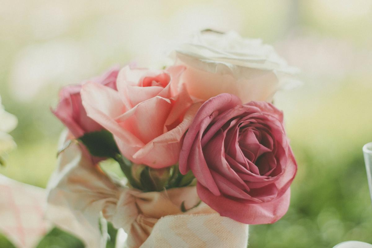 Valentine's Day Roses Generic