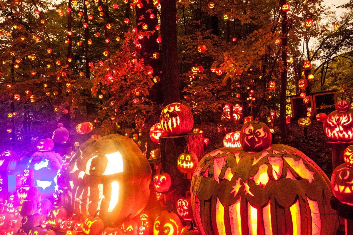 jack o lantern spectacular