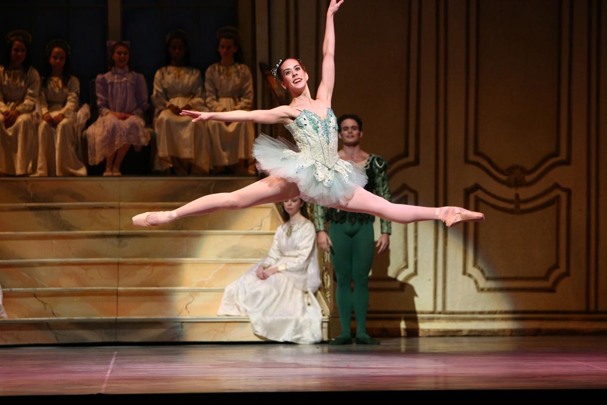 Dayton Ballet Zoom