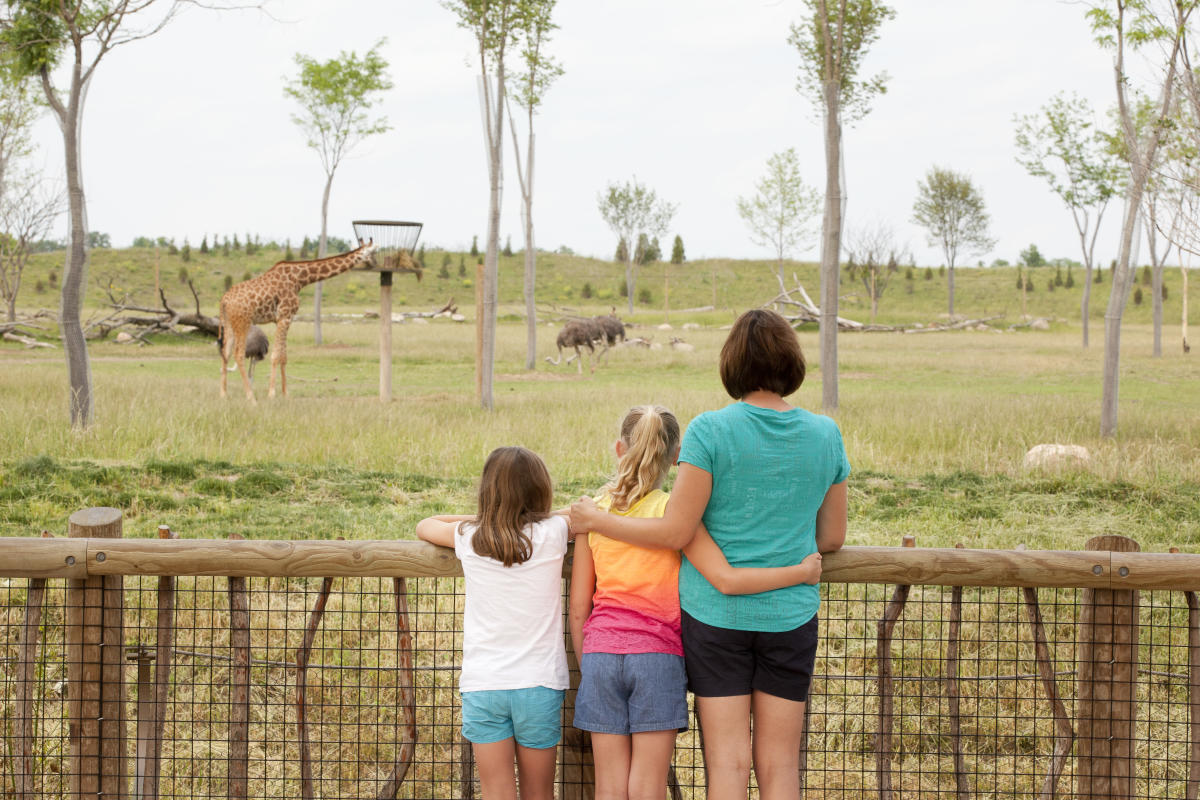 A mother and her two daughters arm in arm looking out at the savanna at the Heart of Africa at the Columbus Zoo.