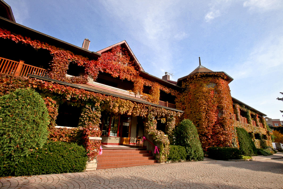 Lynfred Winery covered in autumn leaves