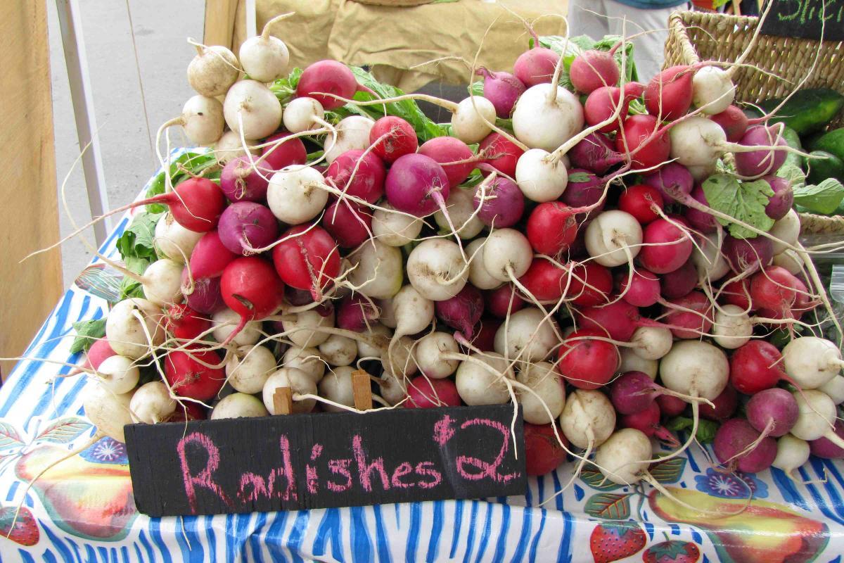 radishes at Farmer's market