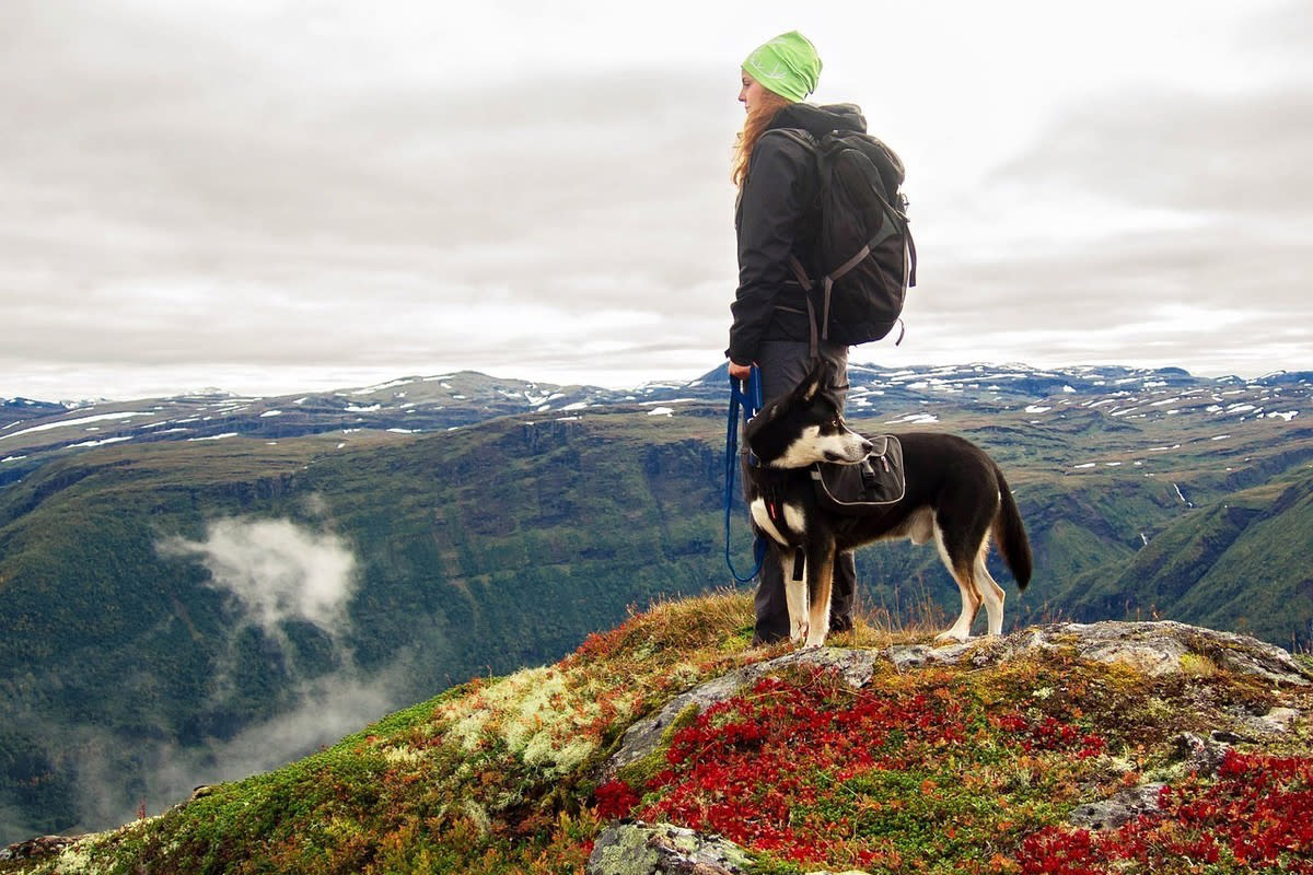 Hiking with Dog Durango