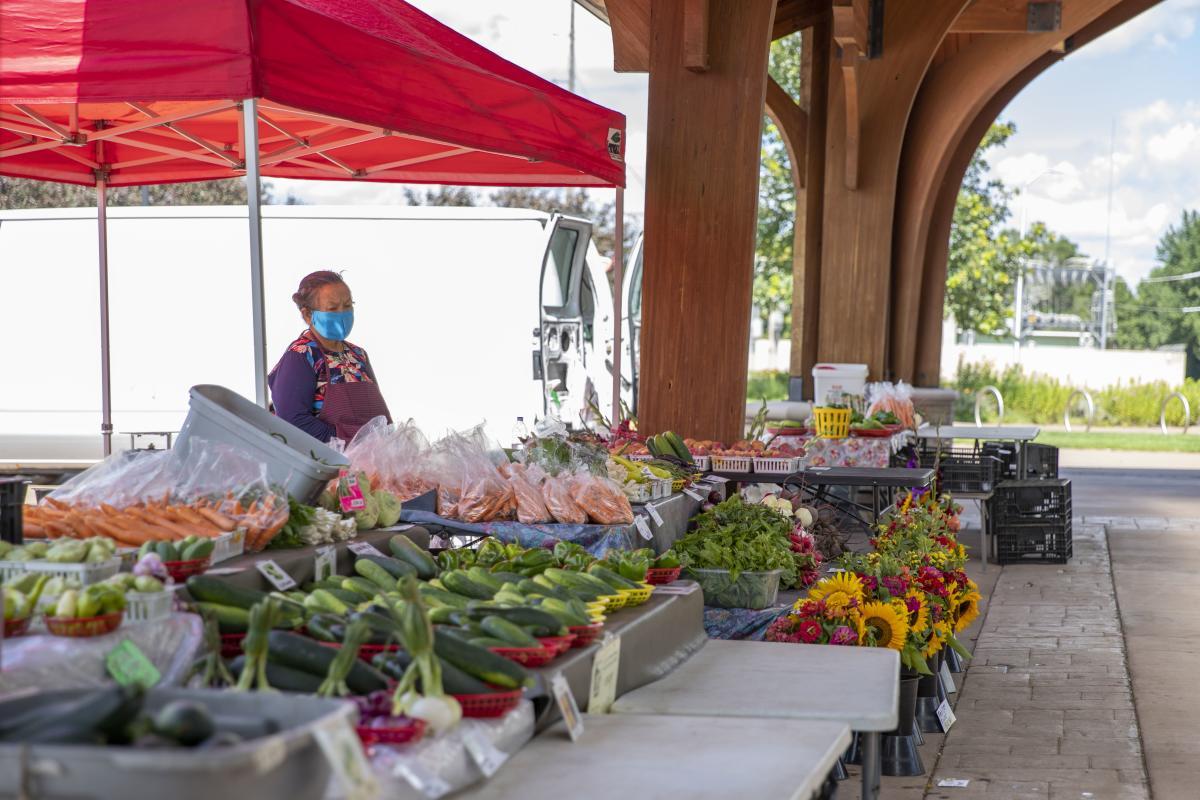 Downtown Farmer's Market in Phoenix Park in the summer