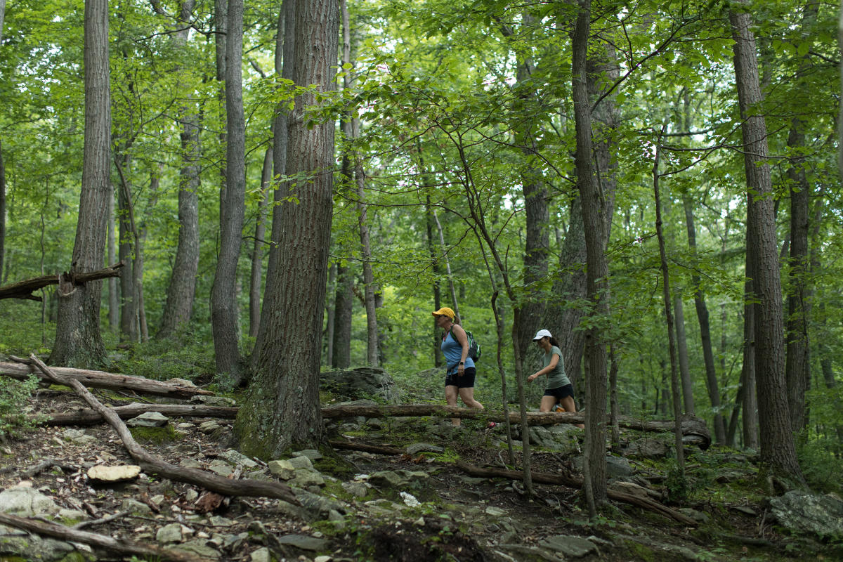 Women hiking Catoctin Mountain Park