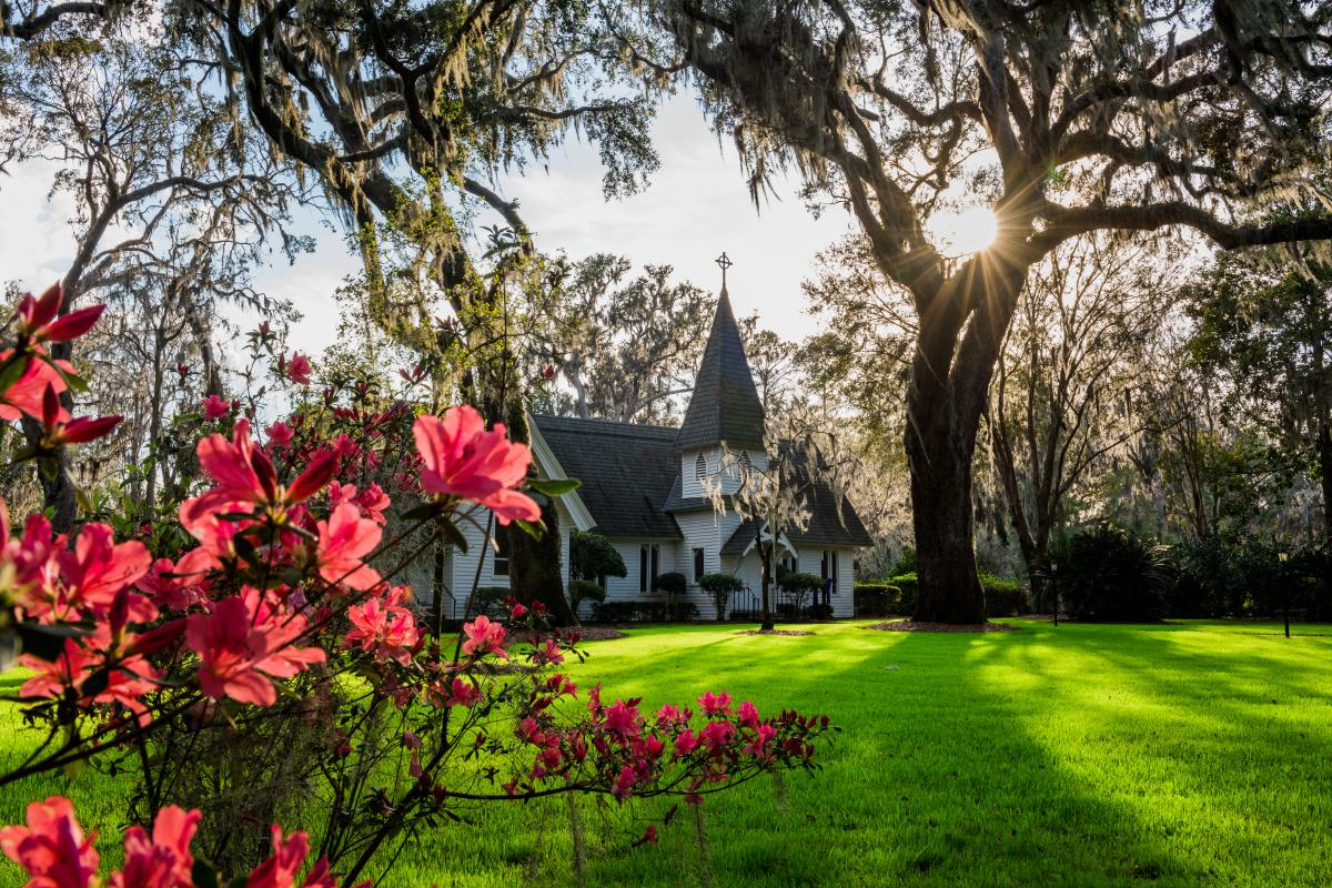 Blooming azaleas adorn the grounds of Christ Church on St. Simons Island, Georgia
