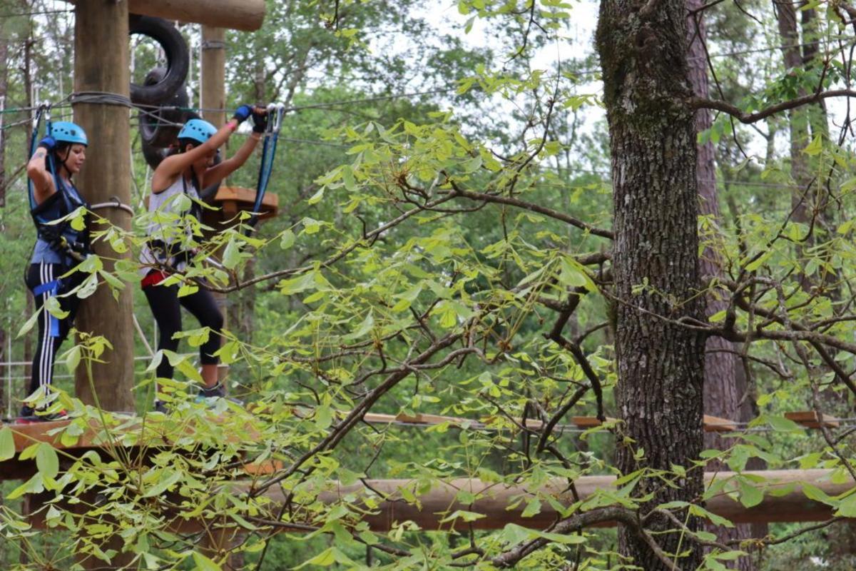 The Woodlands Treeventures