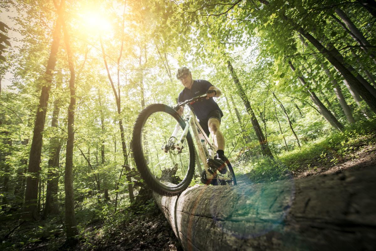 Biking_Patapsco State Park_Summer_CV