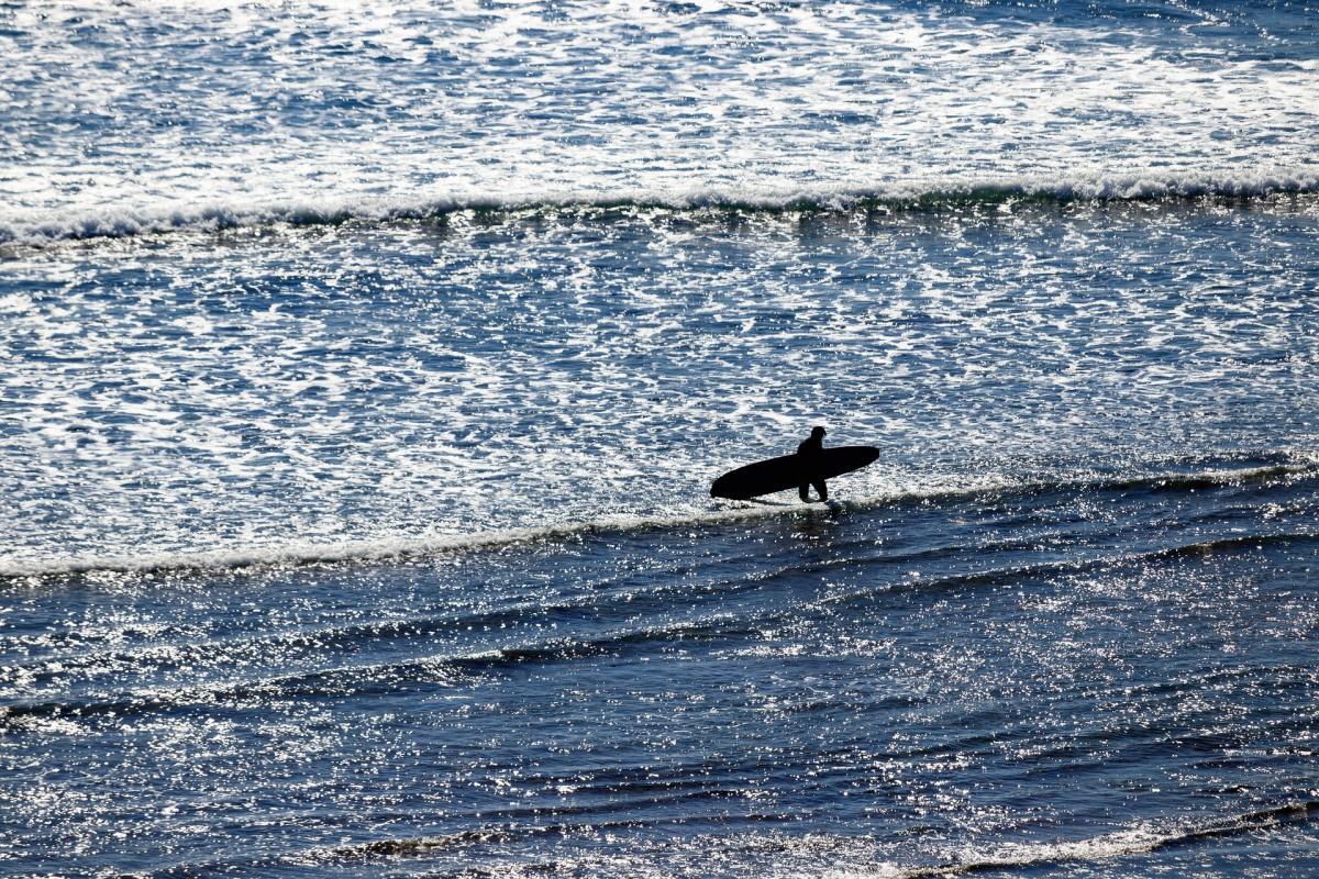 Surfing blog 2