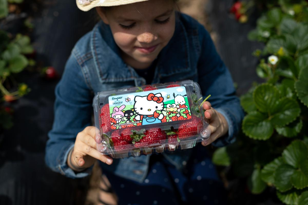 Girl holding container of strawberries with a Hello Kitty label