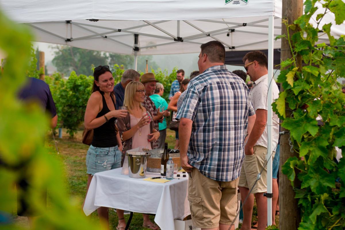 Garagiste North Wine 2018 (8)