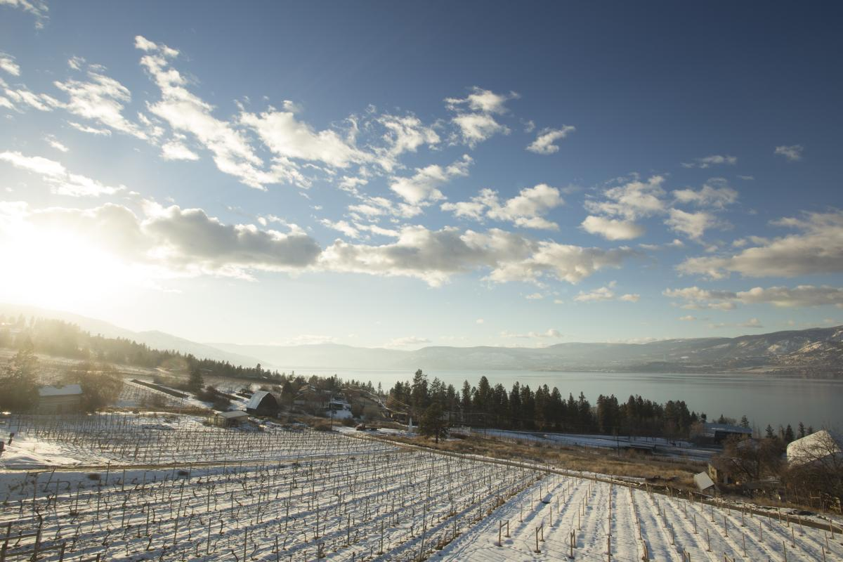 Summerhill Estate Winery