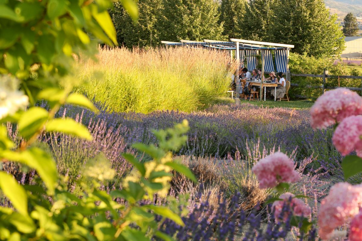 SOURCED Dinner at Okanagan Lavender Farm