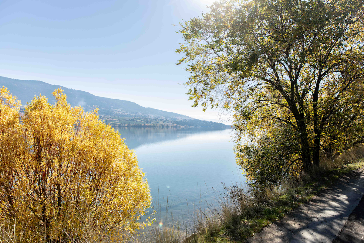 Okanagan Rail Trail in Lake Country