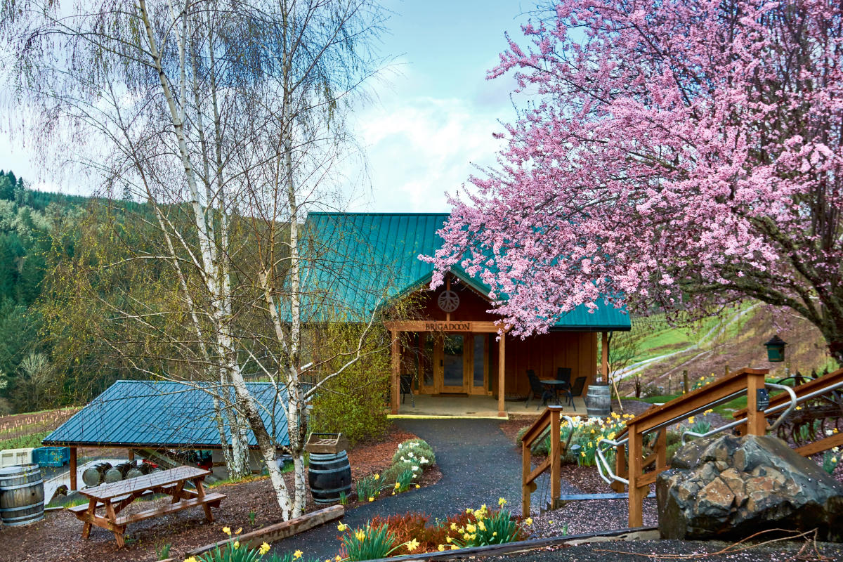 Brigadoon Wine Company in the Spring by Thomas Moser