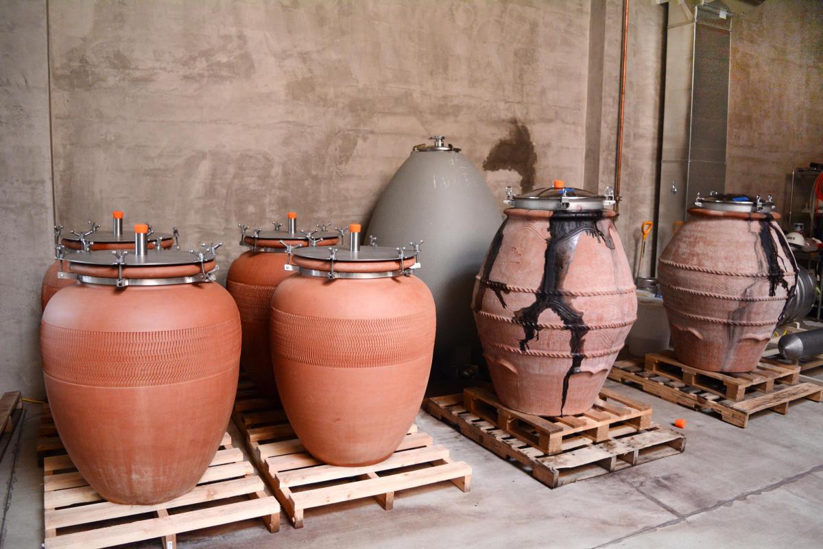 Civic Winery Amphora by Colin Morton