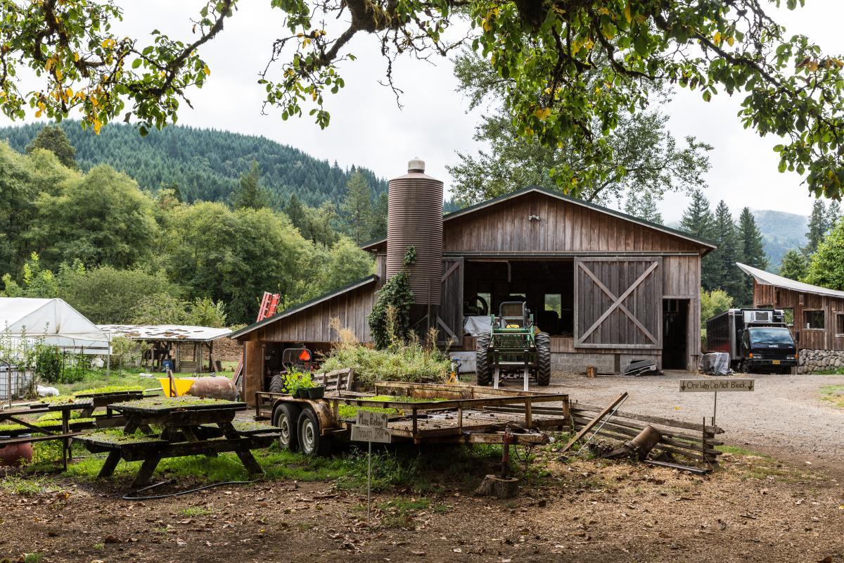 Organic Redneck Farm by Joni Kabana