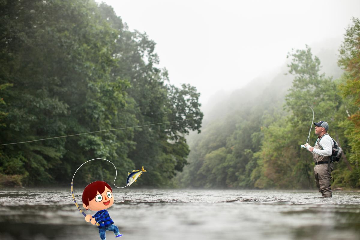 Animal Crossing Fishing