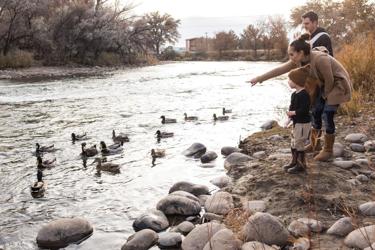 Easily accessed trails bring everyone closer to nature's wonders along the Animas River Trail.