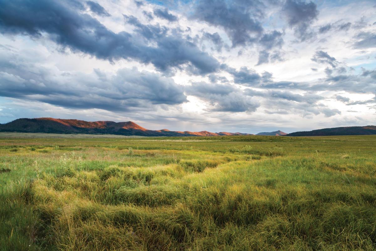 The Valles Caldera National Preserve