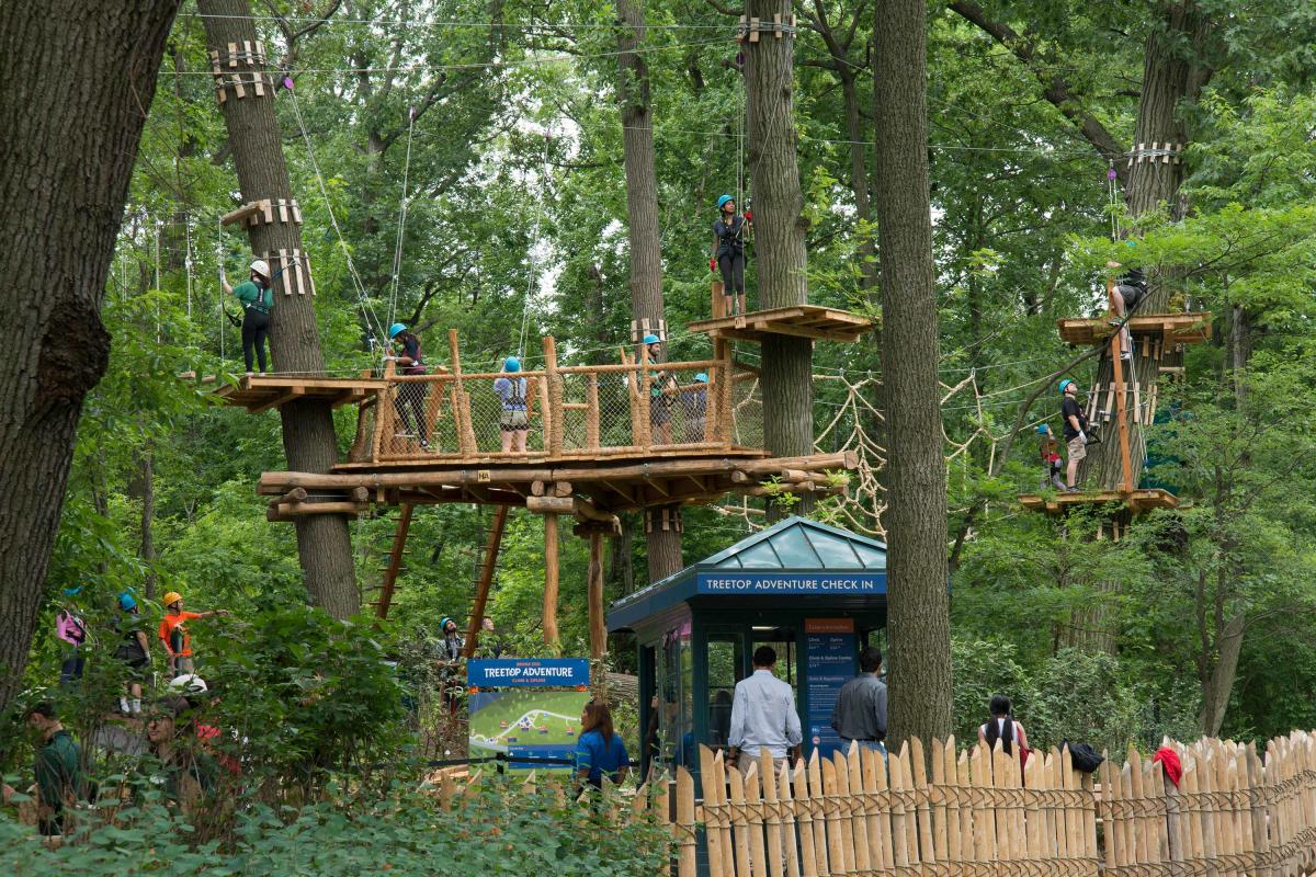 Bronx zoo, treetop adventure