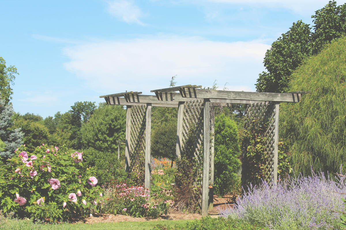 Effingham Gardens
