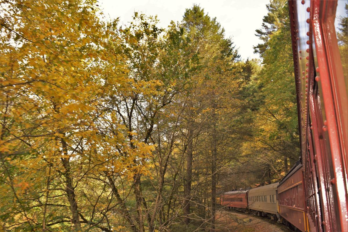 Check the Foliage on a Train Ride