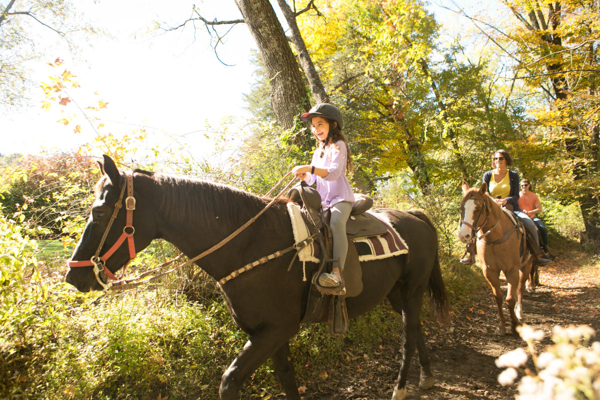 Saddle up for a scenic fall foliage horseback ride
