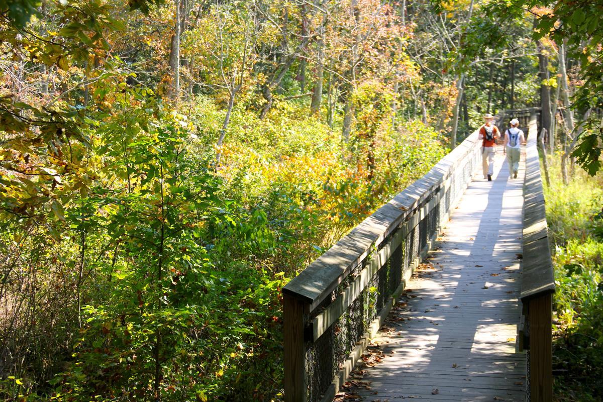 2 people Hiking on trail in Leesylvania State Park