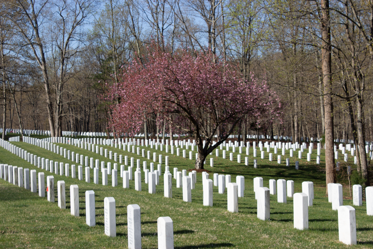 A cemetery with white headstones in lines with trees in the background