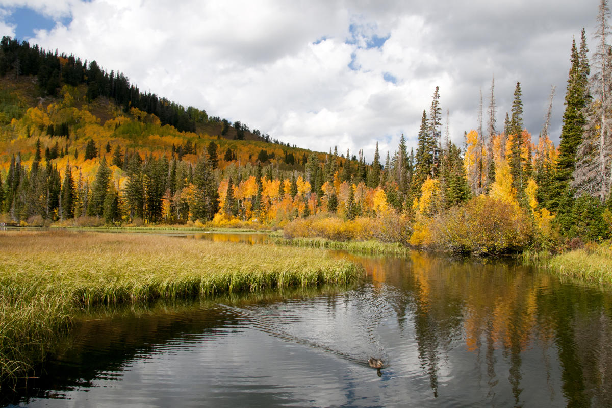 Silver Lake in Big Cottonwood Canyon