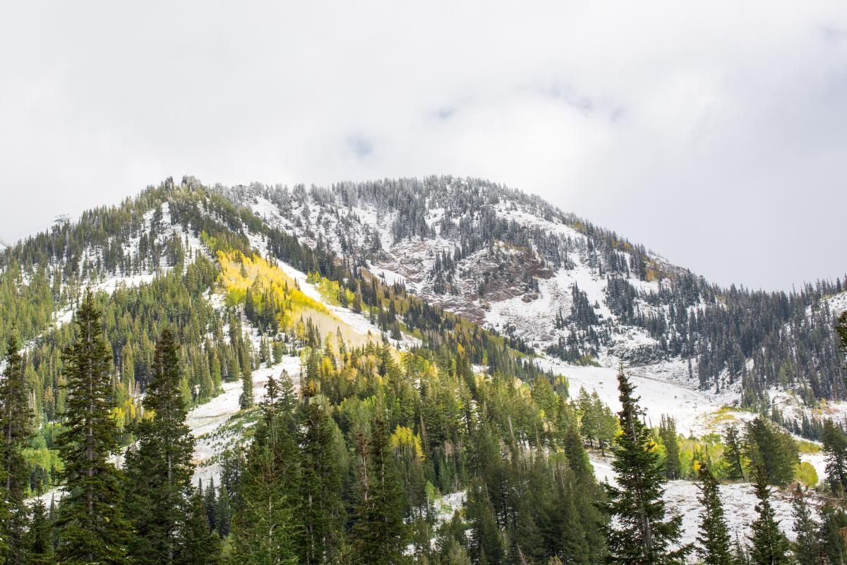 It's hard to beat the fresh air and mountain views at Snowbird—Lauren Wester