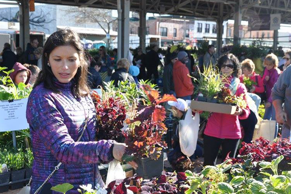 Woman shopping for plants at the Rochester Public Market