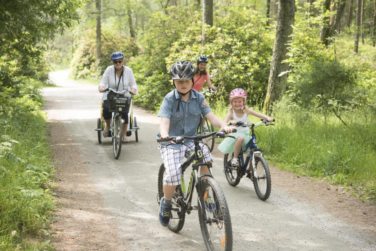Two kids and two woman biking on a small road in the forest