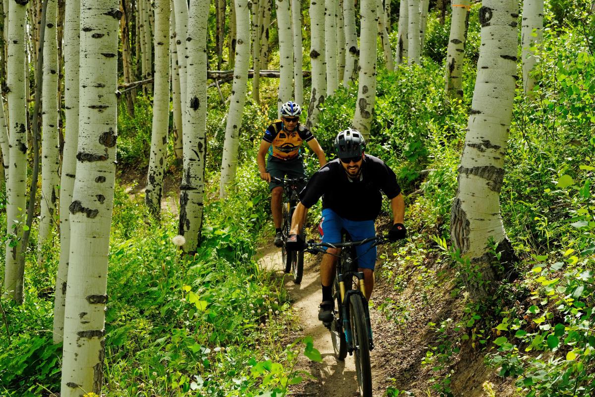 Flash of Gold mountain biking trail recently opened on Buffalo Pass