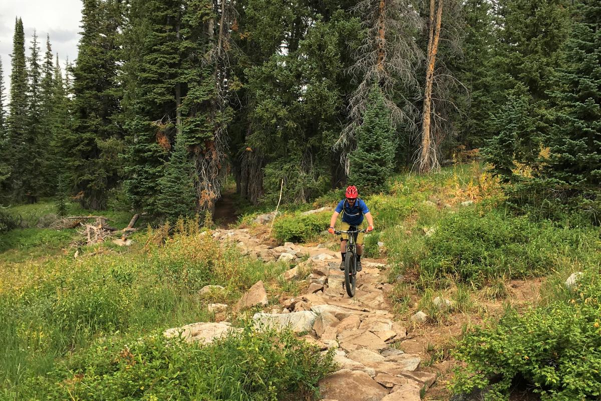 GEM mountain bike trail on Buffalo Pass